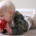 comida para bebés